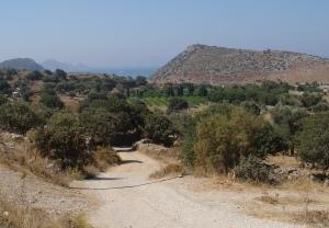 donkey-track-leading-away-from-gumusluk-villa